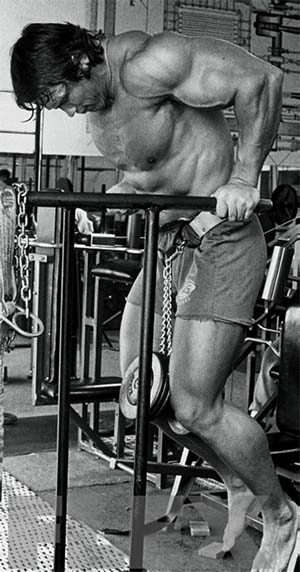 Arnold Doing Dips for Muscle Size