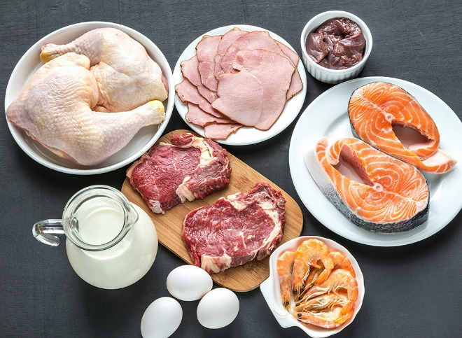 Meat, Fish, Chicken, Shrimp - All Great Sources of Protein